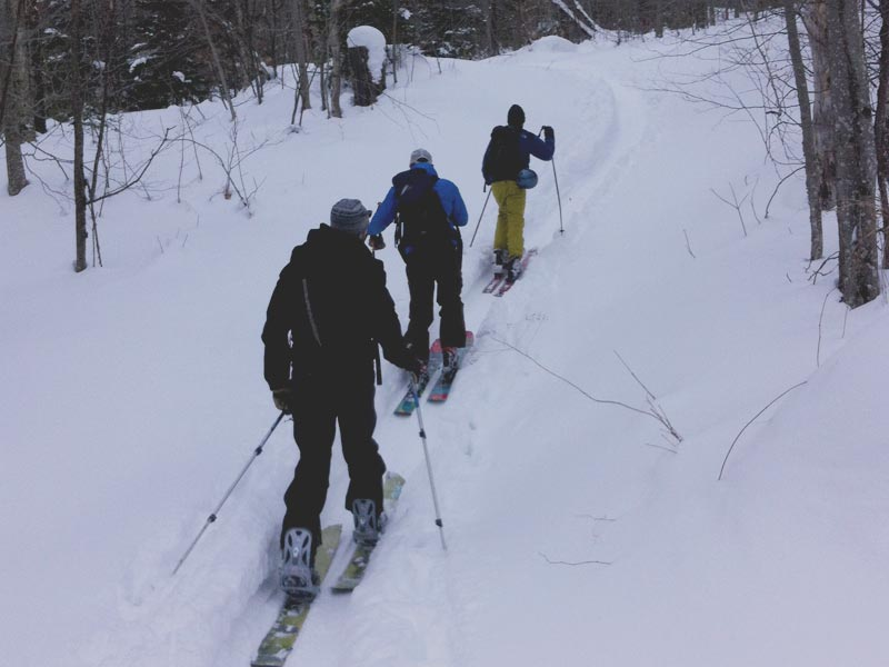Here's a group of adventurers getting after the steep & deep on a pow day in northern Vermont. Mud City adventures are you Stowe ski guide service for a good time.