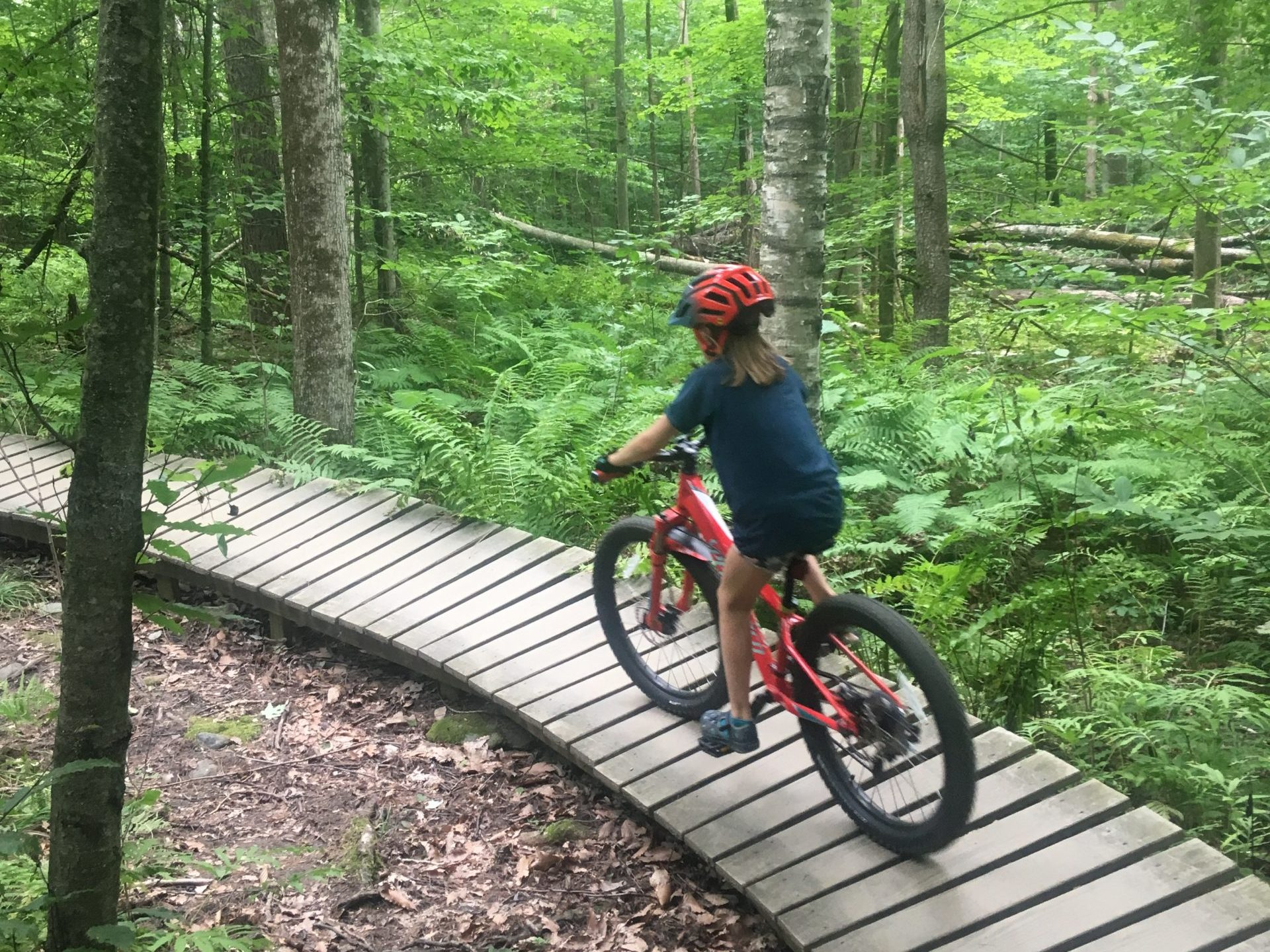 Mountain biking is fun for all ages. At Mud City we offer kids mountain bike camps twice per summer, for 3 days at a time.